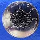 Kanada 1 Oz Maple Leaf Platin